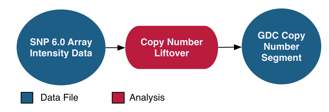 Copy Number Variation Analysis Pipeline graphic