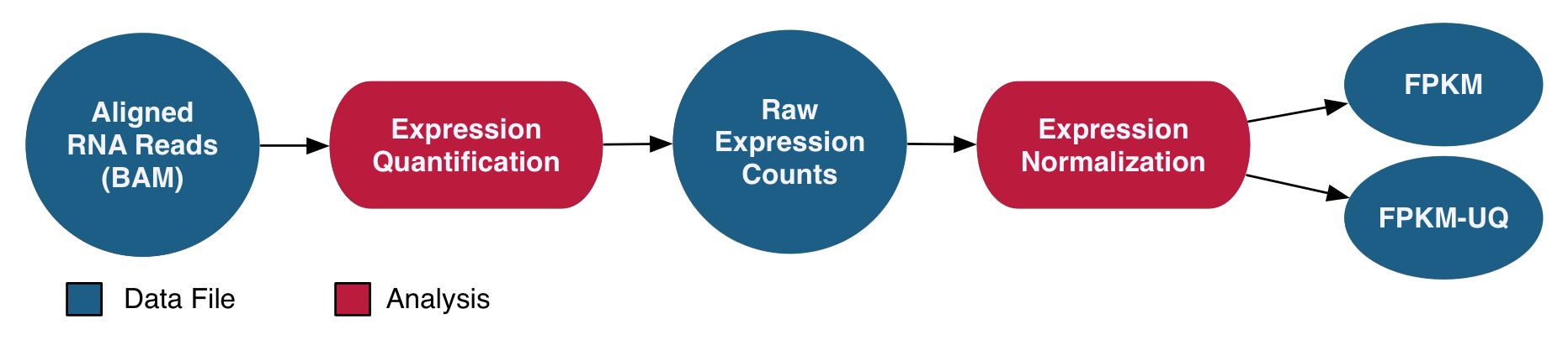 mRNA-Seq Analysis Pipeline graphic