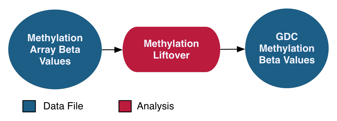 Methylation Liftover Pipeline graphic
