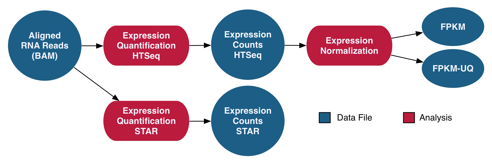 RNA-Seq Gene Expression Analysis